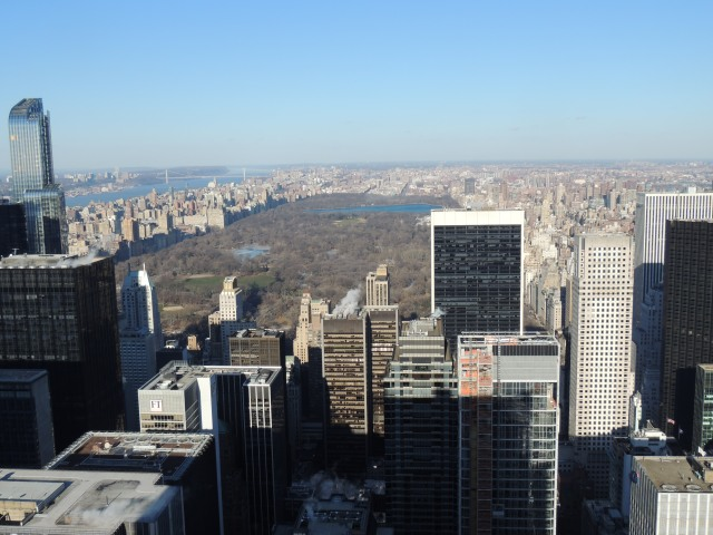 View of Central Park from the top of the Rock